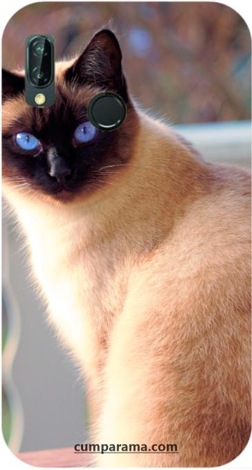 huse personalizate pisica